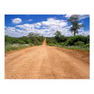 Cartão Postal Estrada de terra, parque nacional de Kruger,