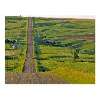 Cartão Postal Estrada do cascalho de Comertown em do nordeste
