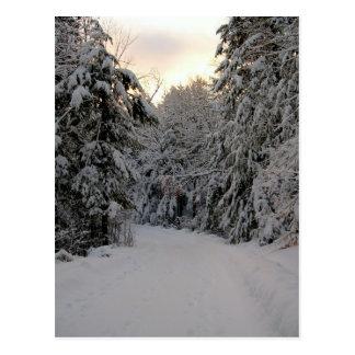 Cartão Postal Estrada do inverno