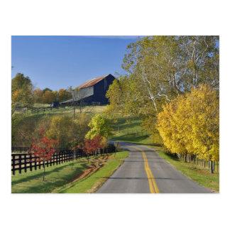 Cartão Postal Estrada rural com a região do Bluegrass de