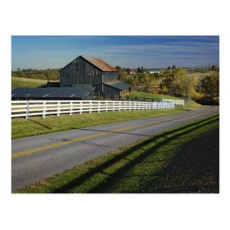 Cartão Postal Estrada rural com uma região do Bluegrass de 2