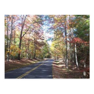 Cartão Postal Estrada secundária do outono