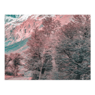 Cartão Postal Estrada vazia do cascalho - Parque Nacional Los