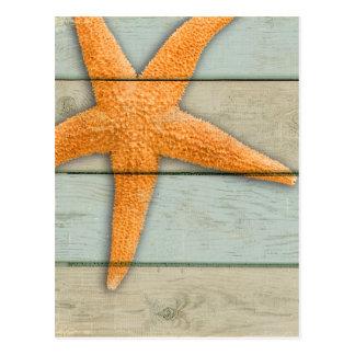 Cartão Postal Estrela do mar alaranjada