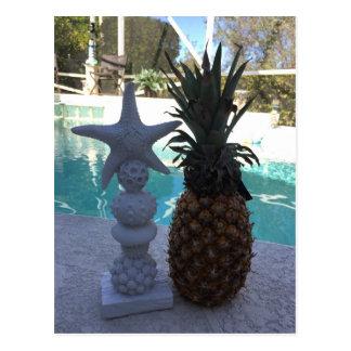 Cartão Postal Estrela do mar do abacaxi
