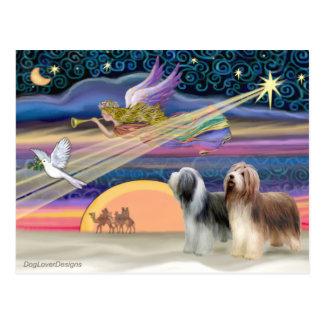Cartão Postal Estrela do Natal - Collies farpados (dois)