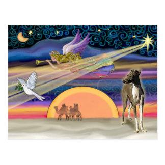 Cartão Postal Estrela do Natal - galgo italiano 1