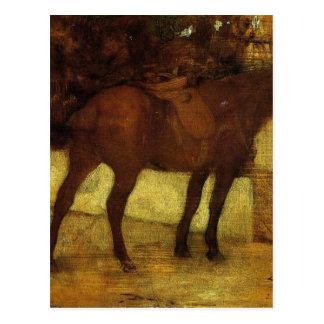 Cartão Postal Estudo dos cavalos por Edgar Degas