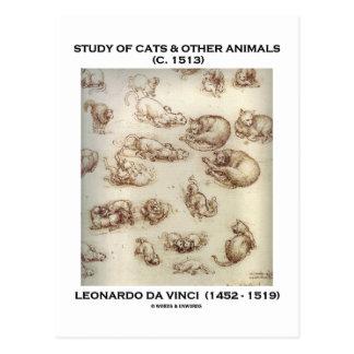 Cartão Postal Estudo dos gatos & dos outros animais (Leonardo da