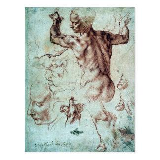 Cartão Postal Estudos de Michelangelo Buonarroti para o Sibyl