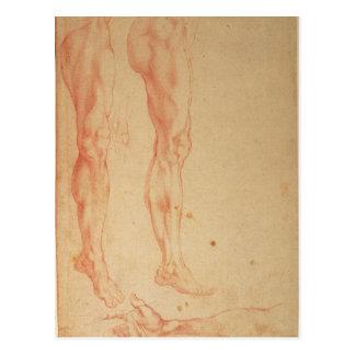 Cartão Postal Estudos dos pés e dos braços