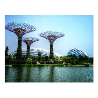 Cartão Postal Estufa de Supertrees e lago da libélula