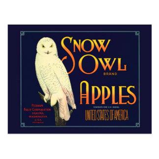 Cartão Postal Etiqueta das maçãs da coruja da neve do vintage