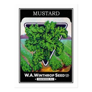 Cartão Postal Etiqueta do pacote da semente de mostarda do