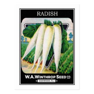 Cartão Postal Etiqueta do pacote da semente do rabanete do