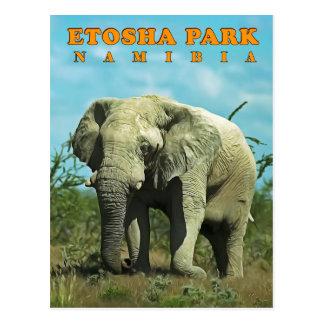 Cartão Postal Etosha, Namíbia