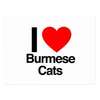 Cartão Postal eu amo gatos burmese
