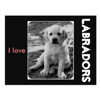 Cartão Postal Eu amo Labradors