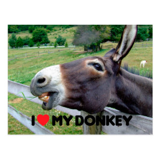 Cartão Postal Eu amo meu animal de fazenda engraçado da mula do