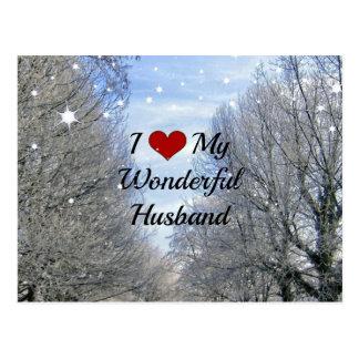 Cartão Postal Eu amo meu marido maravilhoso (o texto maior)