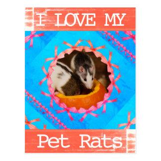 Cartão Postal Eu amo minha foto dos ratos do animal de estimação