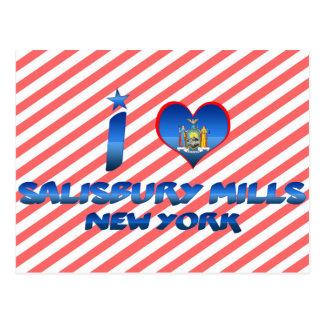 Cartão Postal Eu amo moinhos de Salisbúria, New York