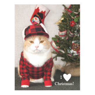 Cartão Postal Eu amo o Natal!