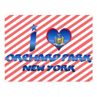Cartão Postal Eu amo o parque do pomar, New York