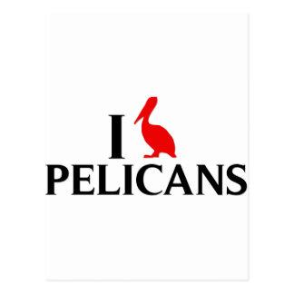 Cartão Postal Eu amo pelicanos