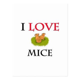 Cartão Postal Eu amo ratos
