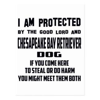 Cartão Postal Eu sou protegido pela boa baía Retr do senhor e de
