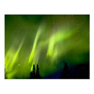 Cartão Postal EUA, Alaska, Chena Hot Springs. Aurora 3
