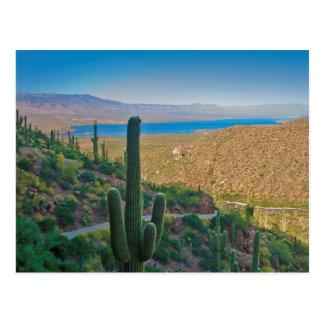 Cartão Postal EUA, arizona. Vista da entrada a Tonto