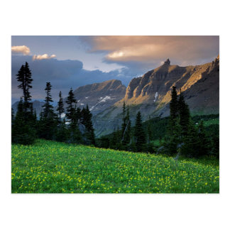 Cartão Postal EUA, Montana, parque nacional de geleira, passagem