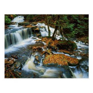 Cartão Postal EUA, Pensilvânia, parque estadual do vale de