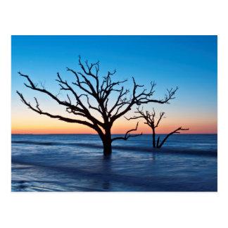 Cartão Postal EUA, South Carolina, ilha de Edisto, baía da