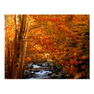 Cartão Postal EUA, Tennessee. Angra de pressa 2 da montanha