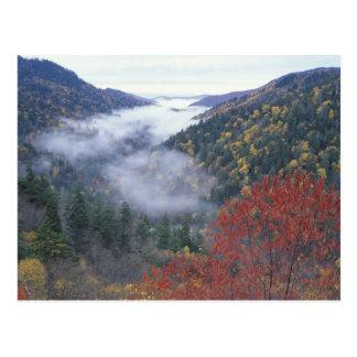 Cartão Postal EUA, Tennessee, grandes montanhas de Smokey