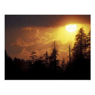Cartão Postal EUA, Tennessee, Great Smoky Mountains NP. 2