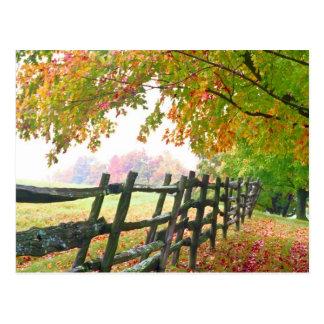 Cartão Postal EUA, Vermont. Cerca sob a folha de queda