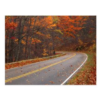 Cartão Postal EUA, Virgínia, parque nacional de Shenandoah,