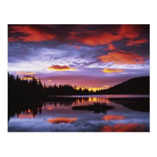 Cartão Postal EUA, Washington, parque nacional de Monte Rainier,
