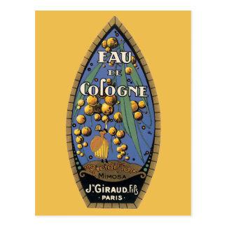 Cartão Postal Eud De Água de Colônia Mimosa