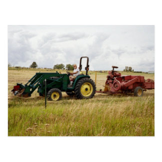 Cartão Postal Factura de feno em campos dourados do rancho