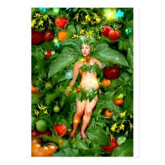 Cartão Postal Fada do tomate