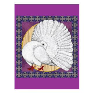 Cartão Postal Fantail:  Branco com fundo
