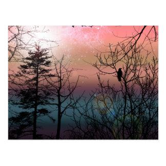 Cartão Postal Fantasia gótico da paisagem da solidão do por do
