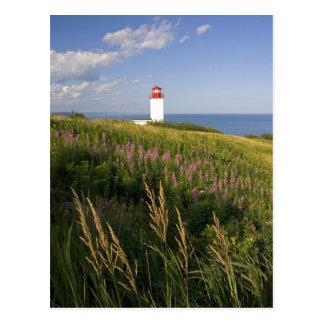 Cartão Postal Farol em St Martins, Novo Brunswick, 2