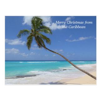 Cartão Postal Feliz Natal da palmeira das caraíbas