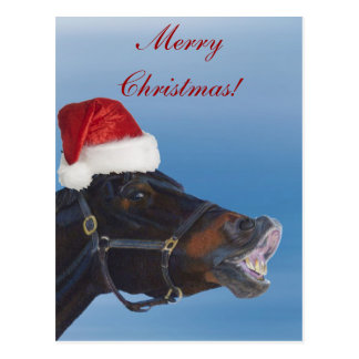 Cartão Postal Feliz Natal engraçado do pônei